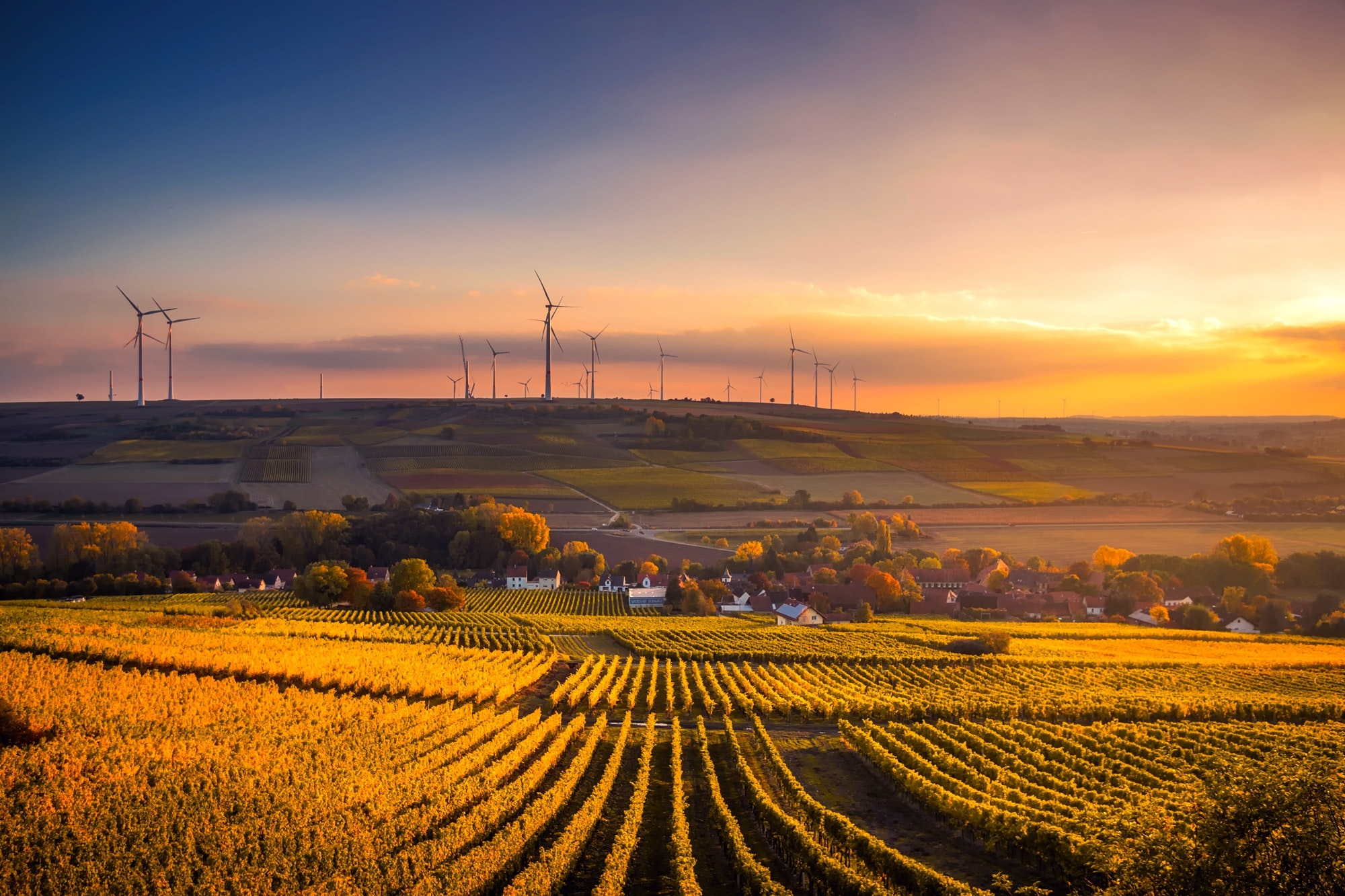 Sustainability: What's in it for the consumer?